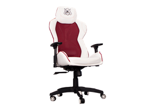 Karuza Yx 0034 V2 Gaming Chair With Back Armor Whitered Yx 0034